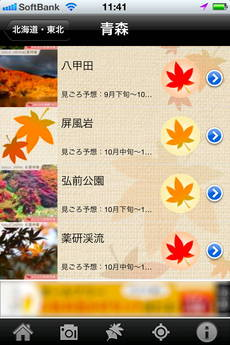 app_photo_kouyou_camera_3.jpg