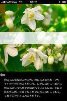 app_ref_japanese_colorful_data_5.jpg