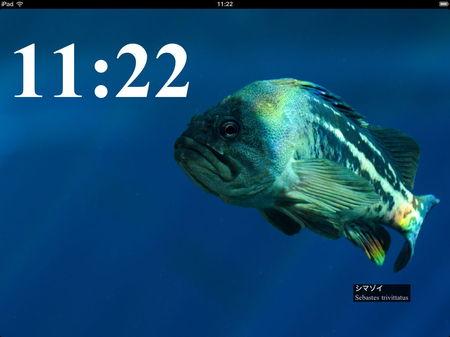 app_photo_aquamarine_fukushima_5.jpg