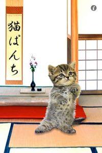 app_ent_kittyboxing_2.jpg