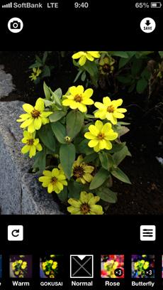 app_photo_cameran_2.jpg