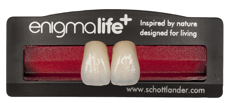 Enigma Life \u2013 Specification Teeth \u2013 Tough Dental Ltd
