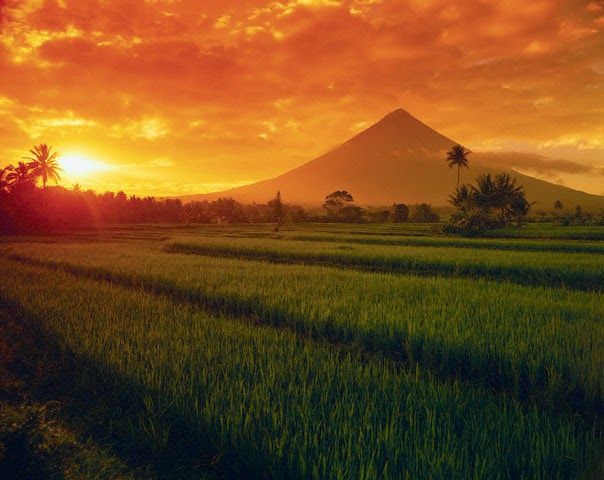 Mount Mayon Perfect Cone Shape Volcano Tourist Spots Finder