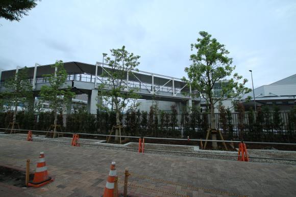 豊洲市場 現地写真