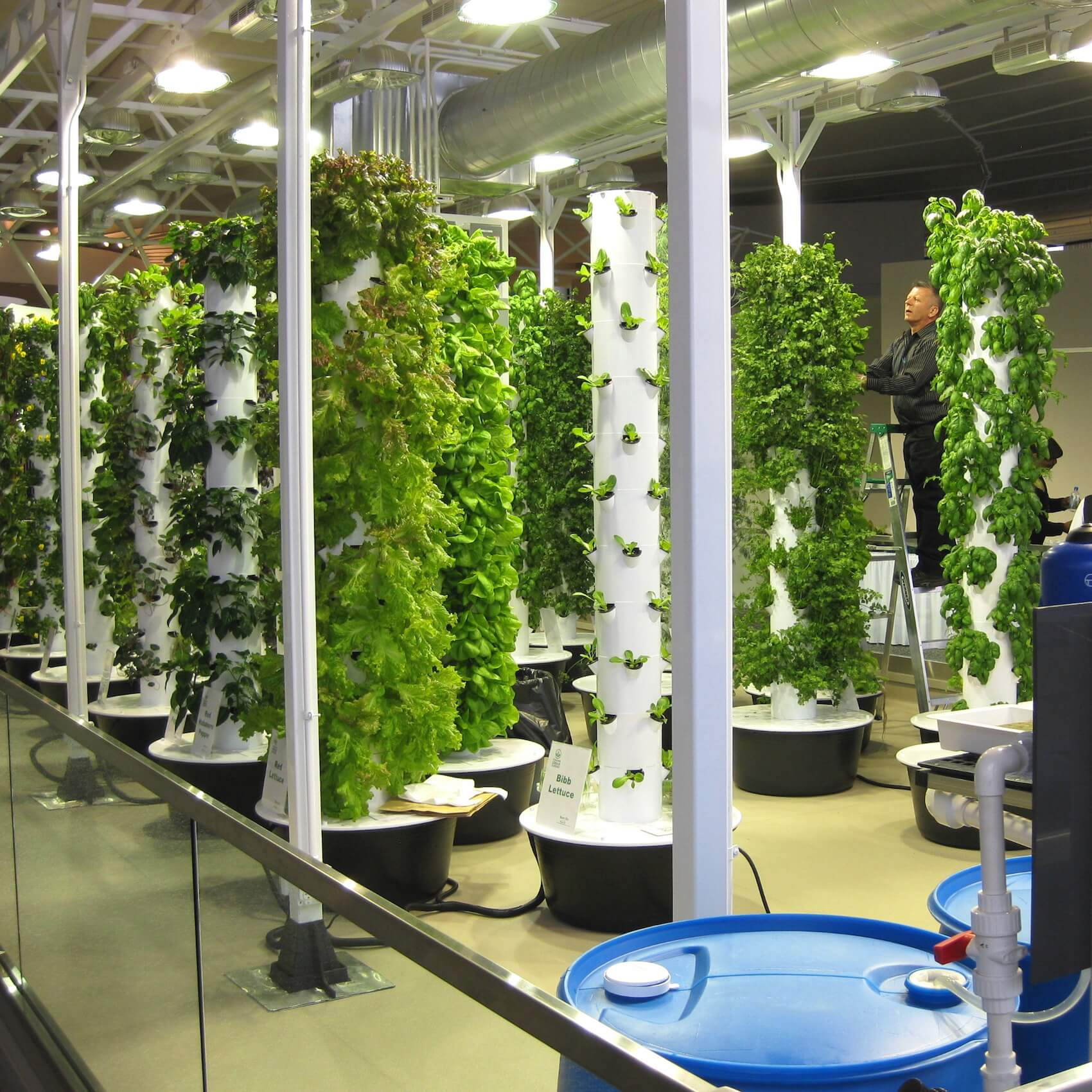 Indoor Garden This Is Why Growing Food Inside Is Going Mainstream