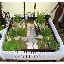 Small Crop Of Fairy Garden Train