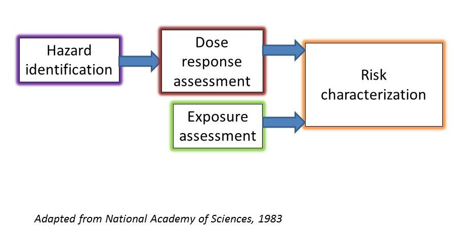 Toxicology Education FoundationHuman Health Risk Assessment