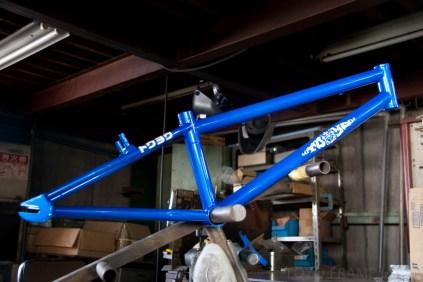 BMX_RACER-8167