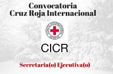 Convocatoria del Comité Internacional de la Cruz Roja
