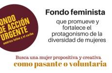 Convocatoria voluntariado/ pasantía en el Fondo de Acción Urgente  para América Latina y el Caribe