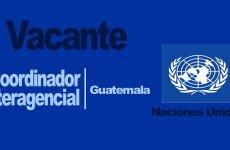 Convocatoria Coordinador Interagencial Guatemala