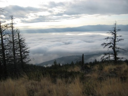 above-the-clouds-on-mount-hayman