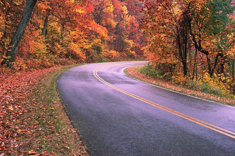 Road Through Great Smokies