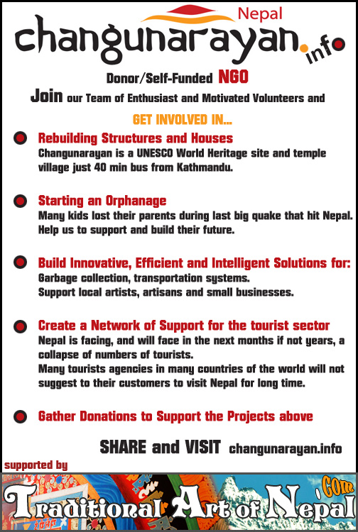 Support NGO in Nepal