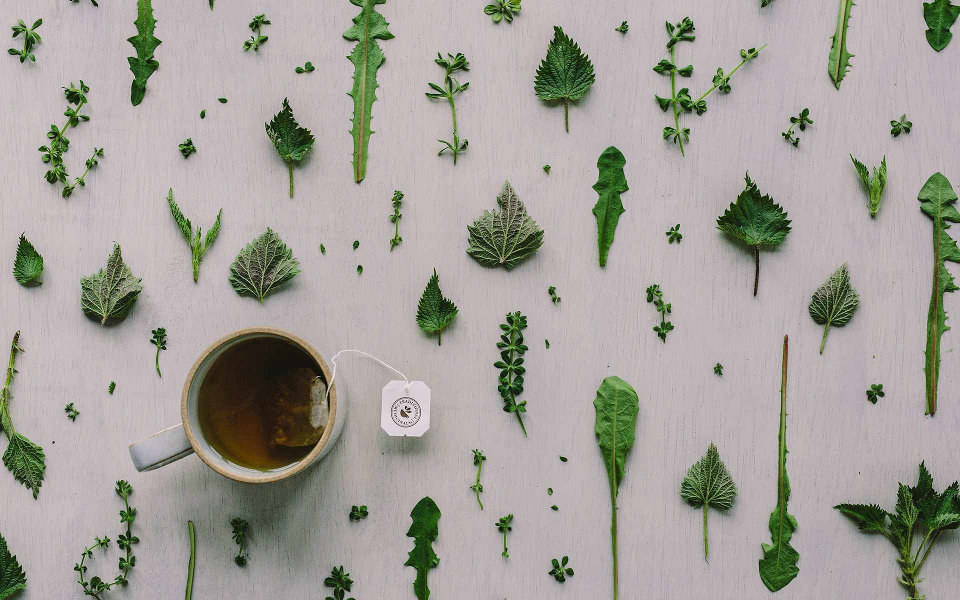 Herbal Wallpaper Spring Tonic Teas Traditional Medicinals Herbal Wellness Teas