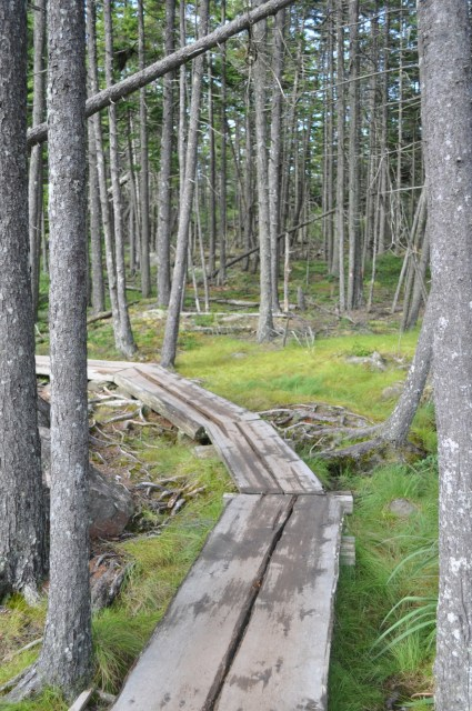 Jordan Pond Boardwalk