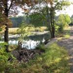 Rockingham rail trail in New Hampshire