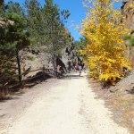 rail trail fall foliage