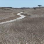 Fossil Hills Trail