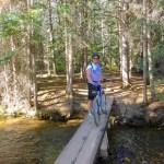 Colorado Trail Segment 6
