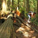 Mountain Bike riders on bike course