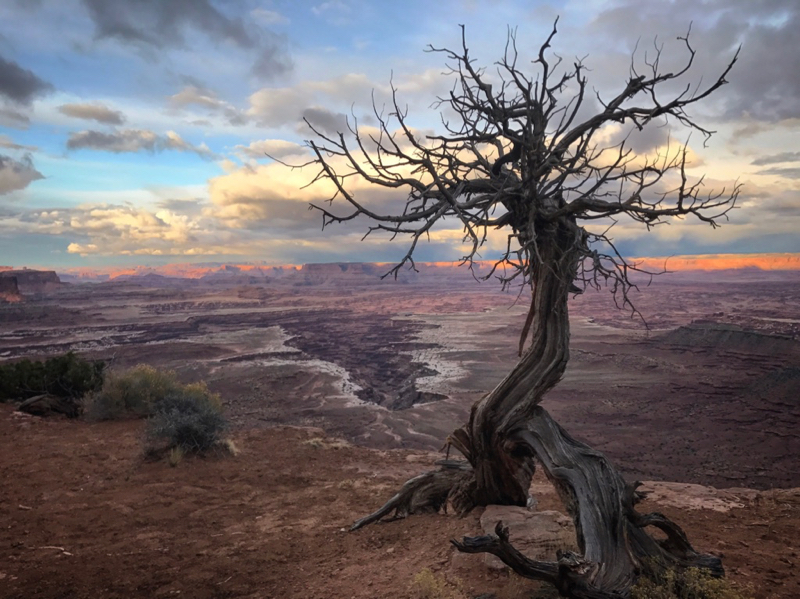 Canyonlands Sunset Island in the Sky