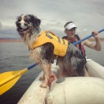 Ruffwear K9 Float Coat Dog Life Jacket Review