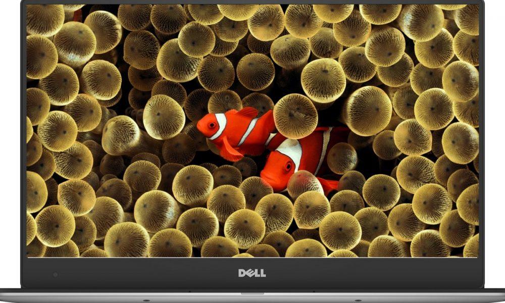 Apple Clownfish Wallpaper Iphone X Tải Miễn Ph 237 40 ảnh Nền đại Dương được B 236 Nh Chọn đẹp Cho