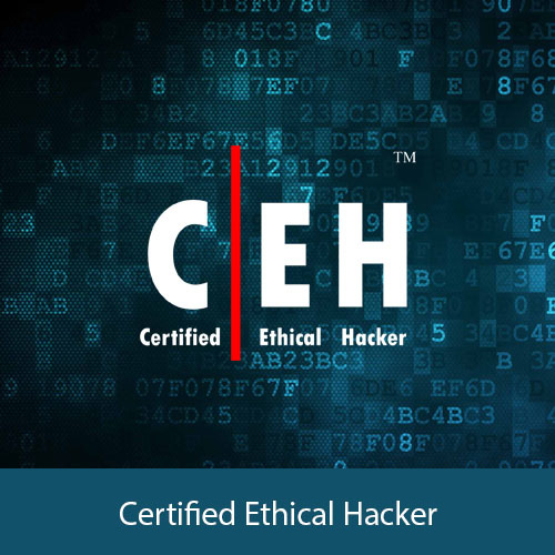 Certified Ethical Hacker (CEH) consulting in Kochi, Kerala