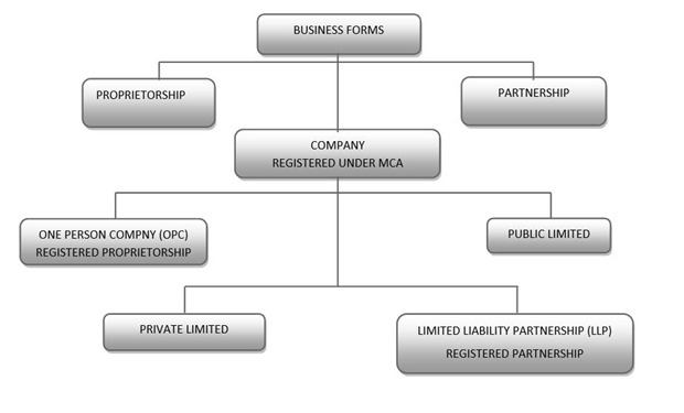 Which Type Of Business Should Startups Incorporate? LLC, OPC, Pvt