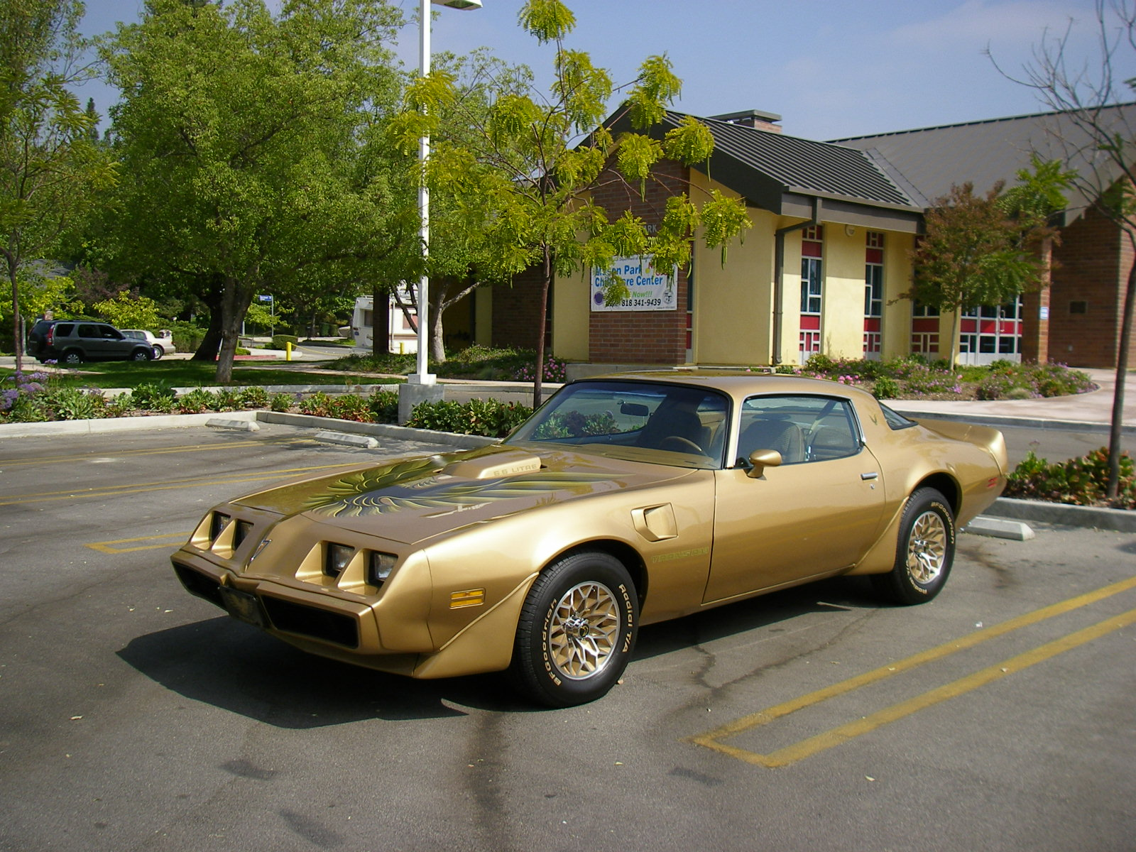 1979 Trans Am Picture Gold Trans Am 1979