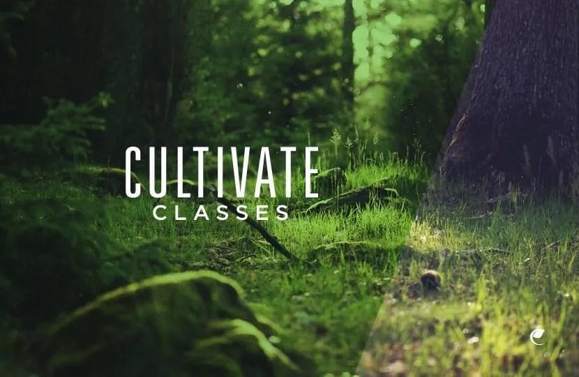 Cultivate Classes