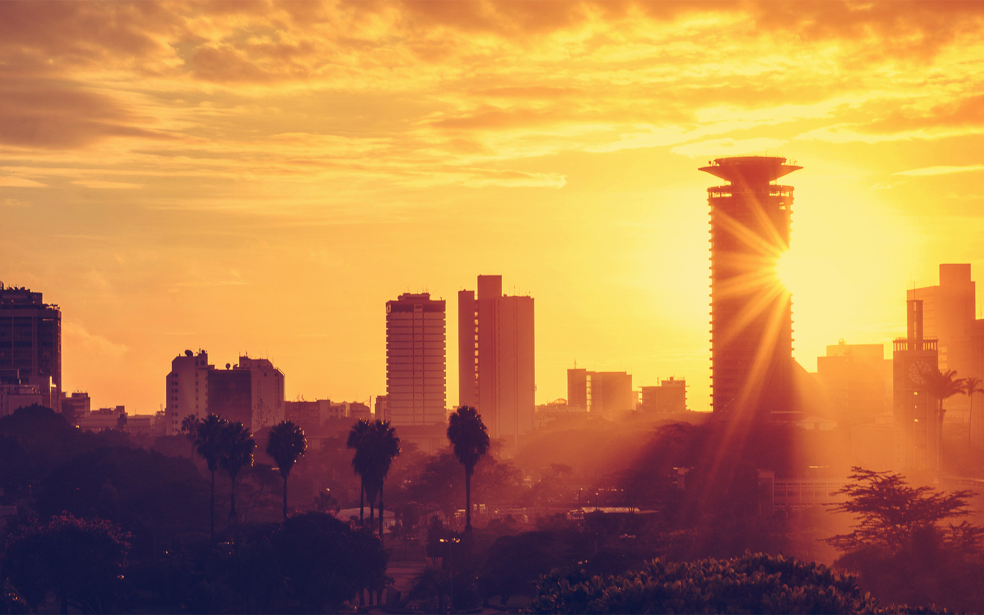 Beautiful Wild Animals Wallpapers Top 10 Attractions In Nairobi To Visit Transit Hotels