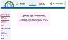 Bienvenida al sistema de consultas de multas de tránsito y cedulones de pago de la Municipalidad de Córdoba. Selección de consultas de multas o cedulones del automotor