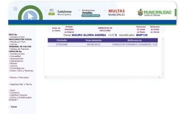 vehiculo-municipal-multas-2