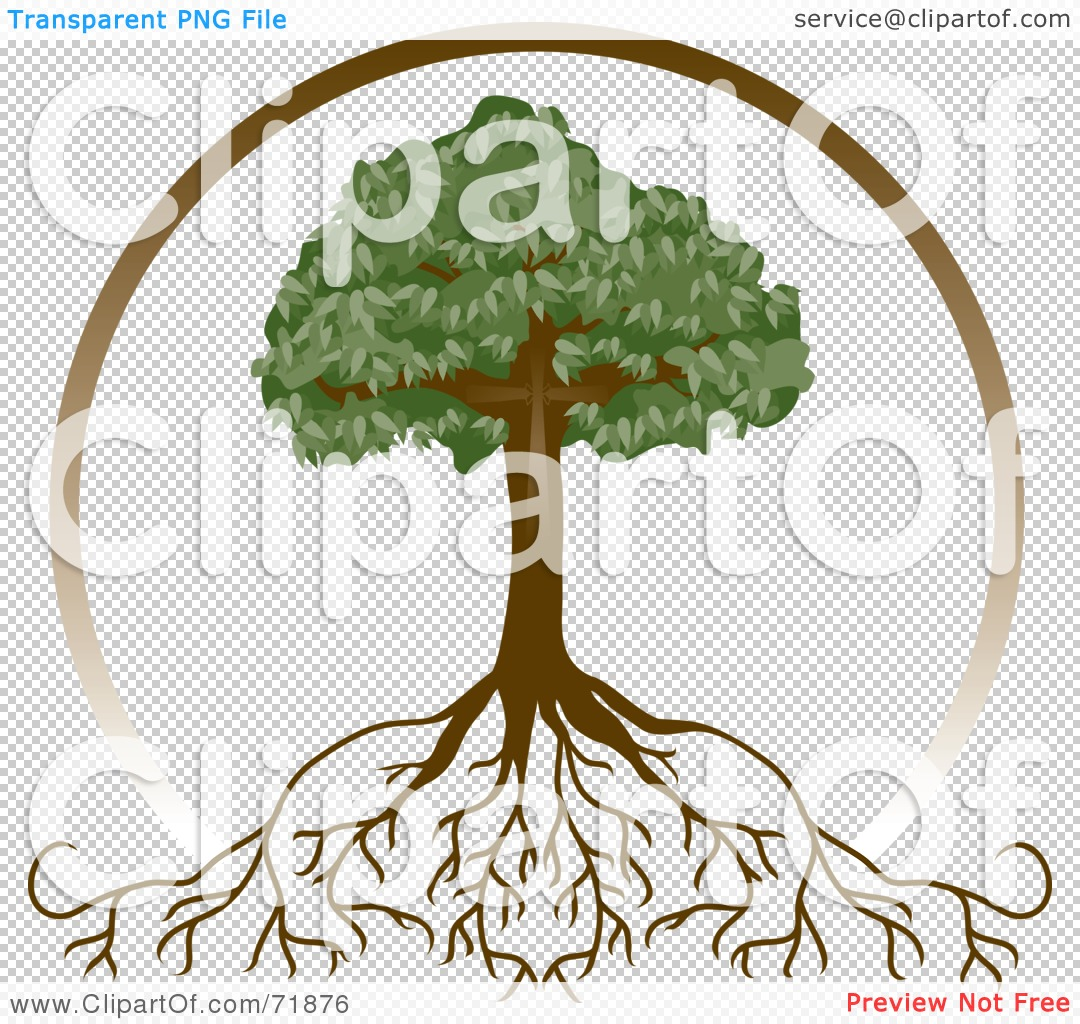 Fullsize Of Tree With Deep Roots