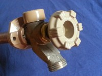 Tuesday Tip of the Week  TRAPS AND TAPS plumbing