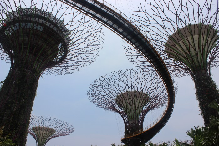 5 Quirky and Free Things to do in Singapore - The Travel Lush