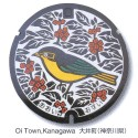 thumbs japanese manhole covers 17