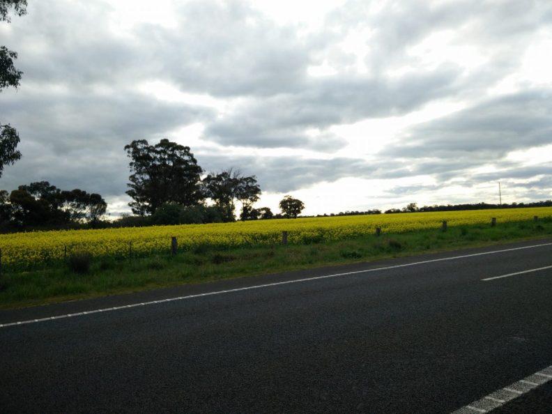Biking australia