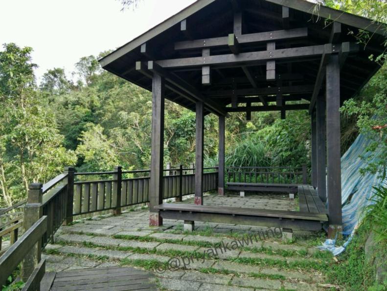 Elephant hiking trail, taiwan