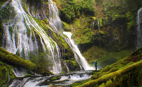 Matthew Cohen Instagram Waterfall Oregon Cover