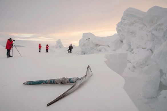 500px-Global-Photowalk-Antartica-2