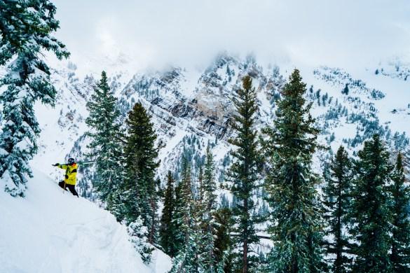 Snowbird, Utah: Photo by Andy Best