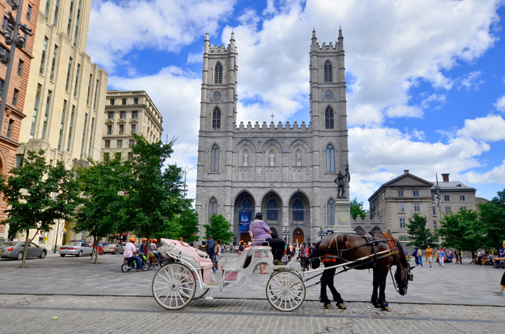 Notre-Dame Basilica is a basilica in the historic district of Old Montreal.