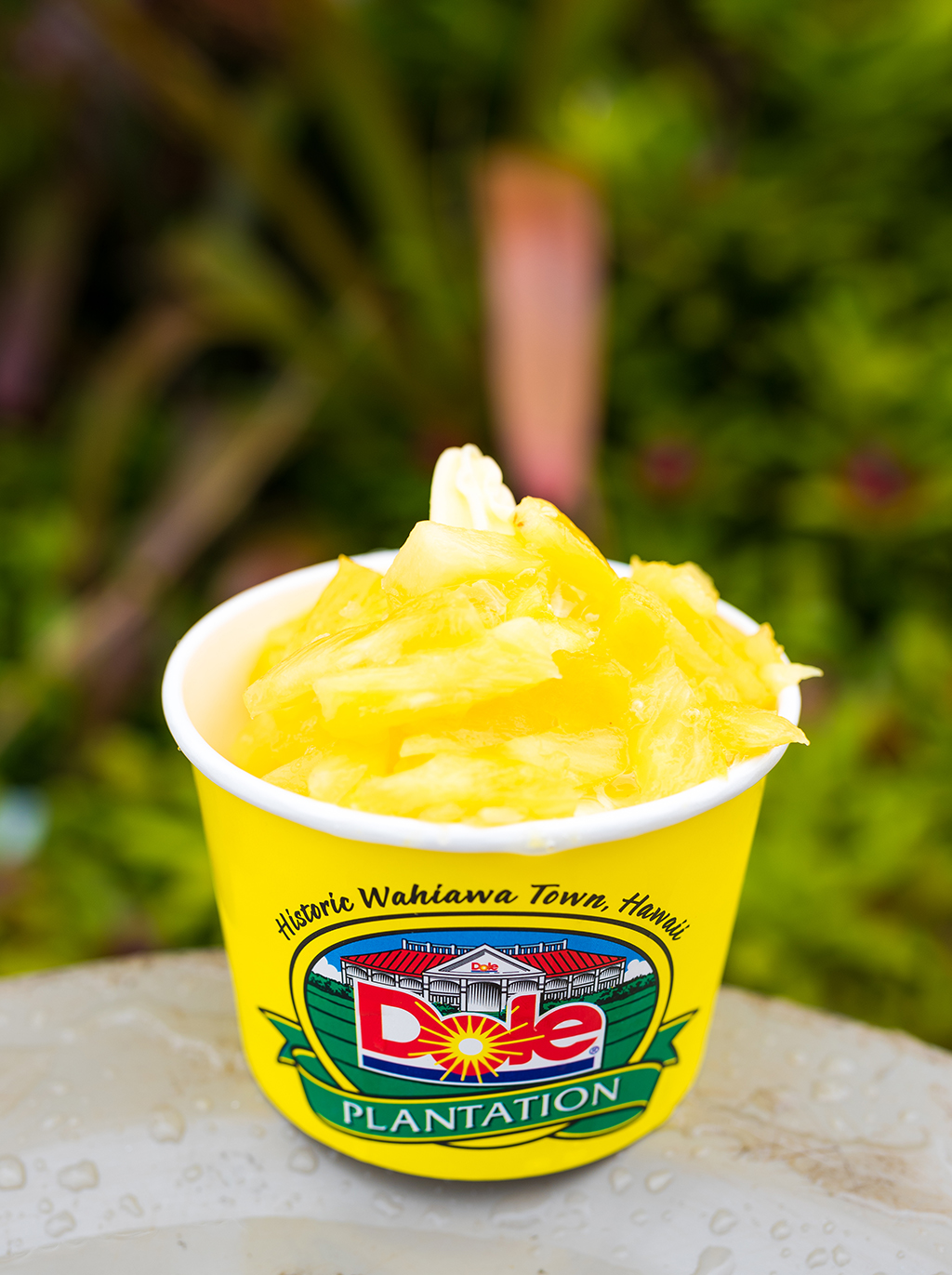 Dole Plantation Review Tips Travel Caffeine