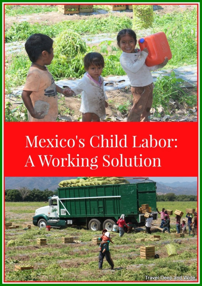 Mexico's Child Labor, A Working Solution, child labor in mexico