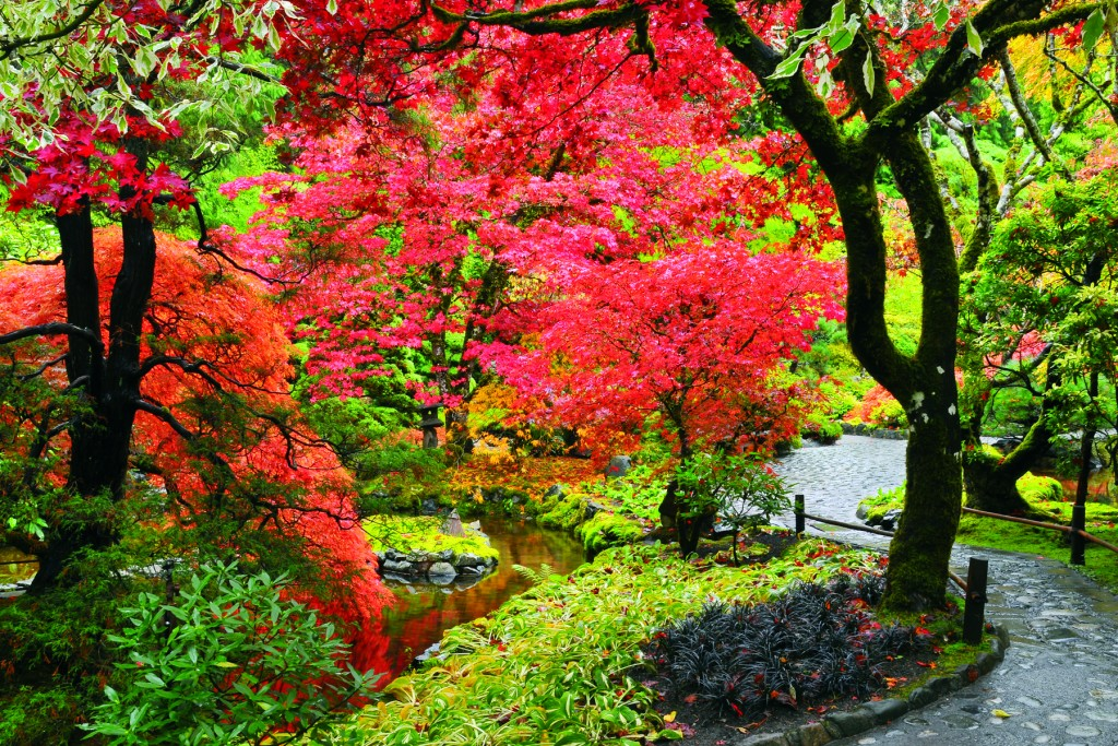 Fall Wallpaper Photos Microsoft Butchart Gardens A Mine Site Is Transformed Into A