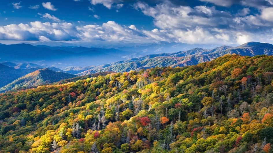 Fall In The Smokies Wallpaper Great Smoky Mountains National Park Tennessee Usa
