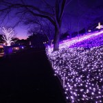クリスマスデートの穴場スポットをご紹介【関東編】